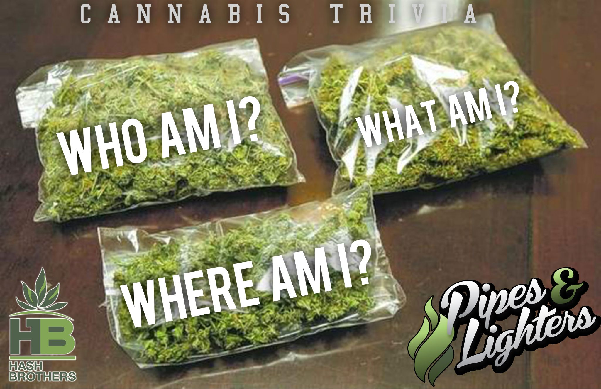 Our game ?'s of course all pertain to Pot ;-) @Hash_Brothers #games #boardgames #CO #Pot #MJ #MMJ #Trivia #Fun #Marijuana @IndyRecords