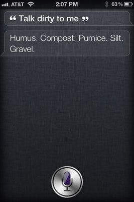 Siri funny-things-to-say-to-technology