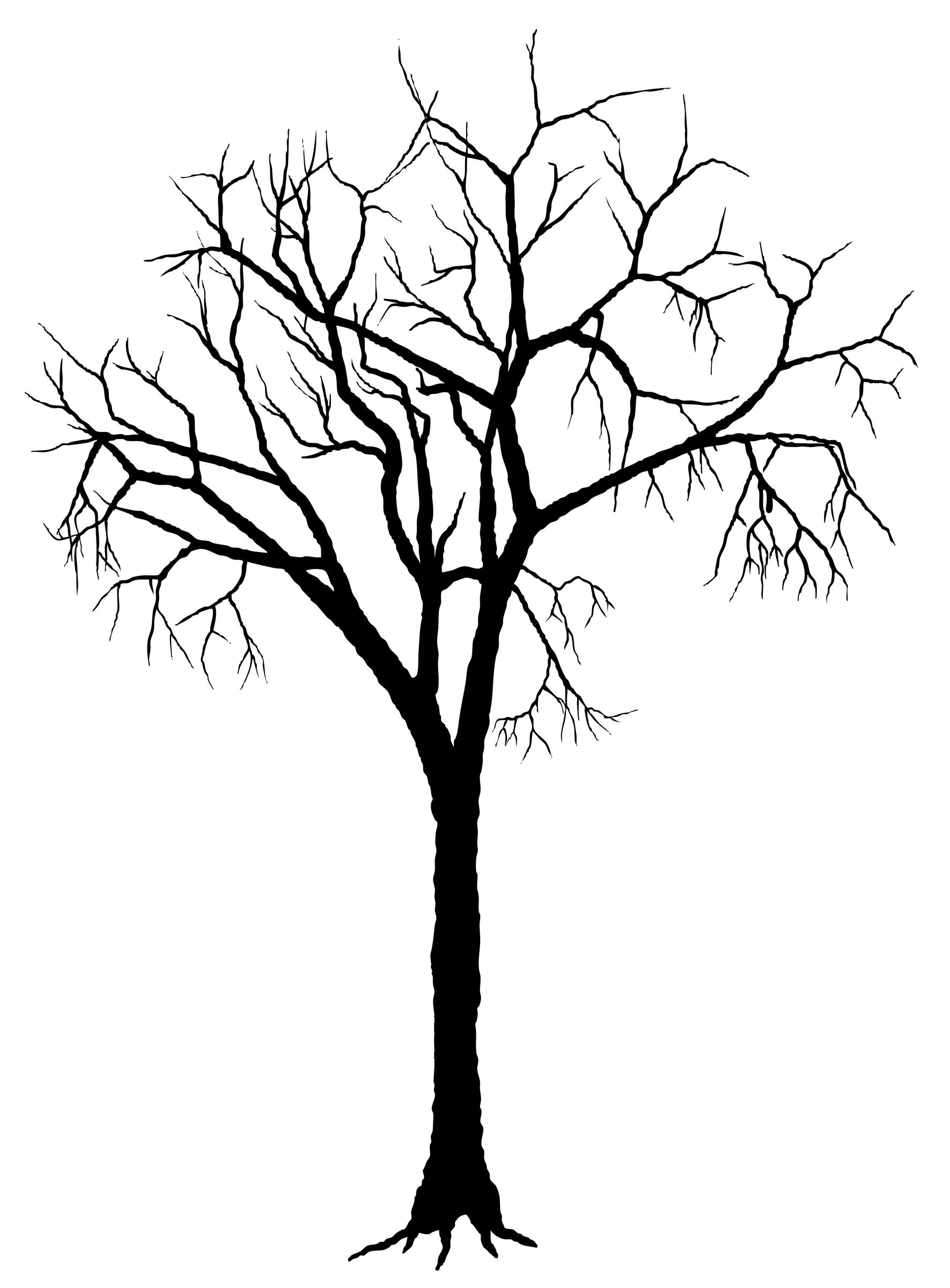 Silhouette Of Trees ClipArt Best Wallflower