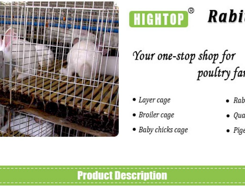 Hightop h type broiler cage hightop poultry equipment