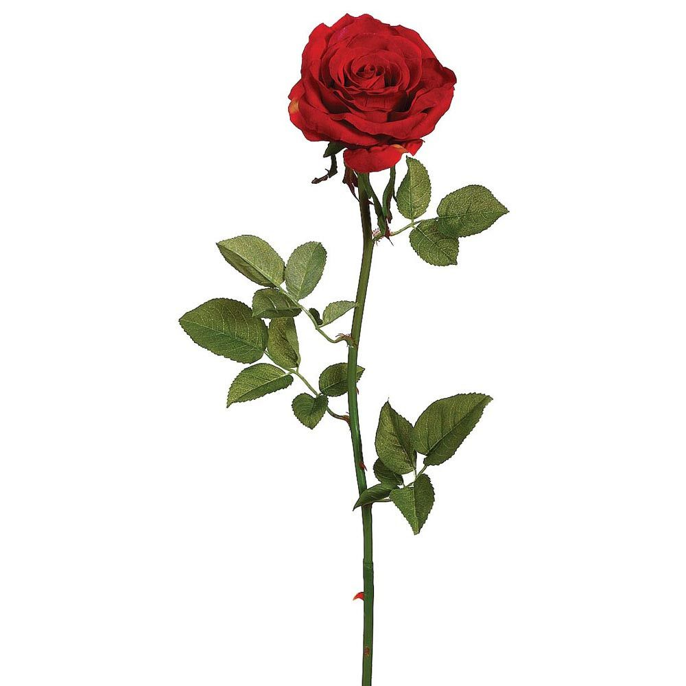 Suzette Garden Open Silk Rose In Red 4 Wide Bloom X 27 Tall Flor