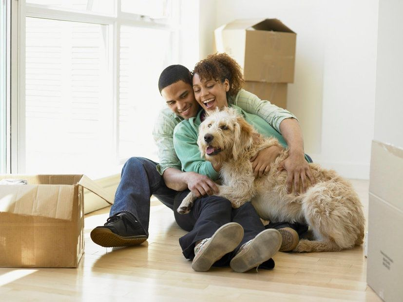 Dog Friendly Apartments For Rent In Concord Ca
