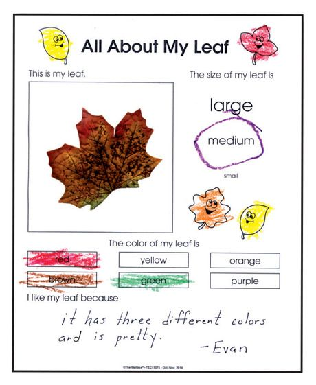 Combine science and writing skills with fun fall activity ...