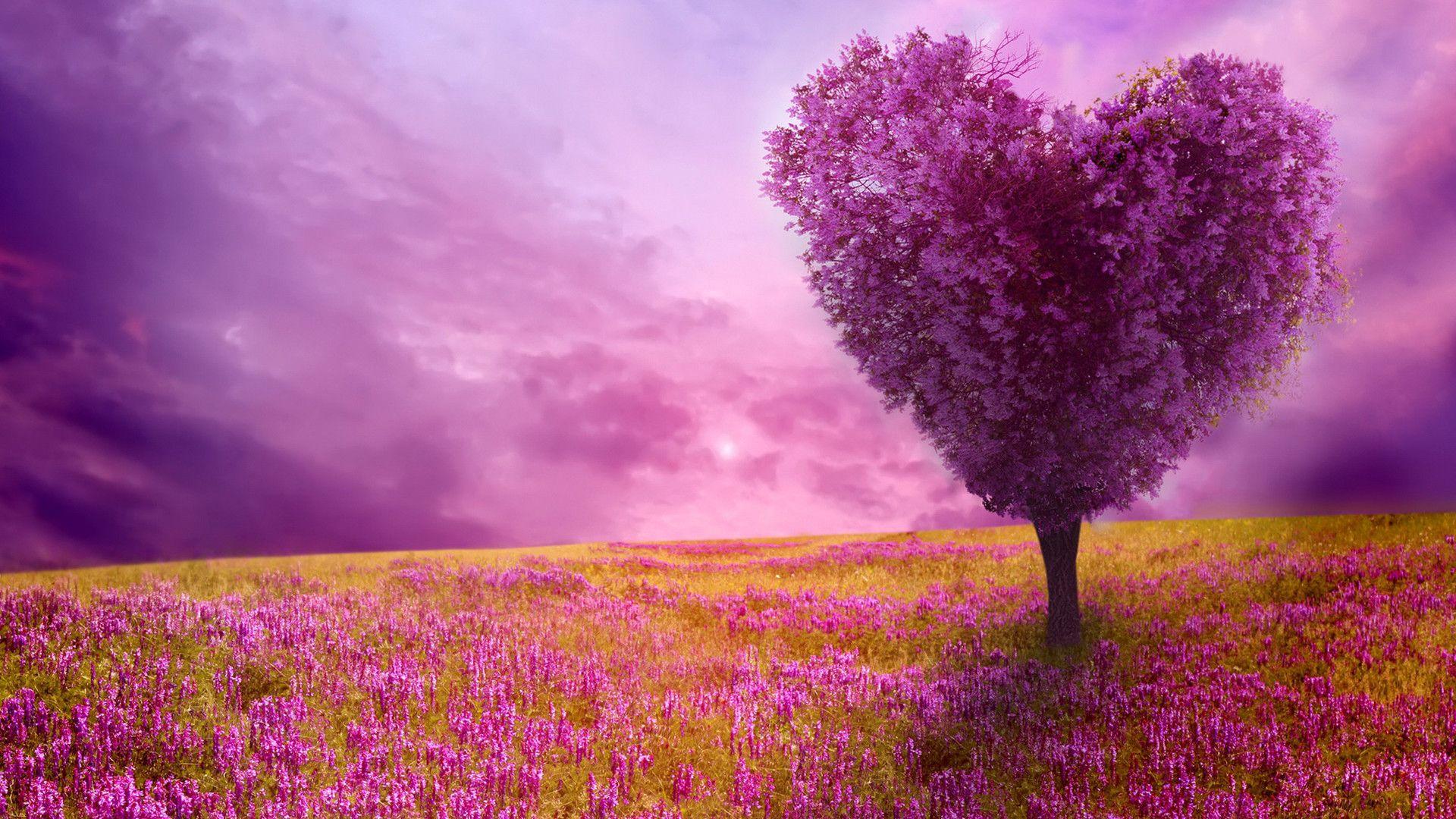 Fantastic Purple Love Tree Heart Shape Beautiful Flowers And Plants Wallpapers Hd Wallpaper Downloa Spring Desktop Wallpaper Spring Wallpaper Spring Images
