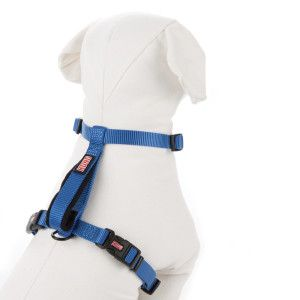 KONG® Harness with Traffic Loop for Dogs - It's good for big-chested