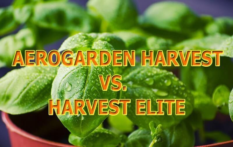 Aerogarden Harvest Vs Harvest Elite Are Customers Seeing 400 x 300