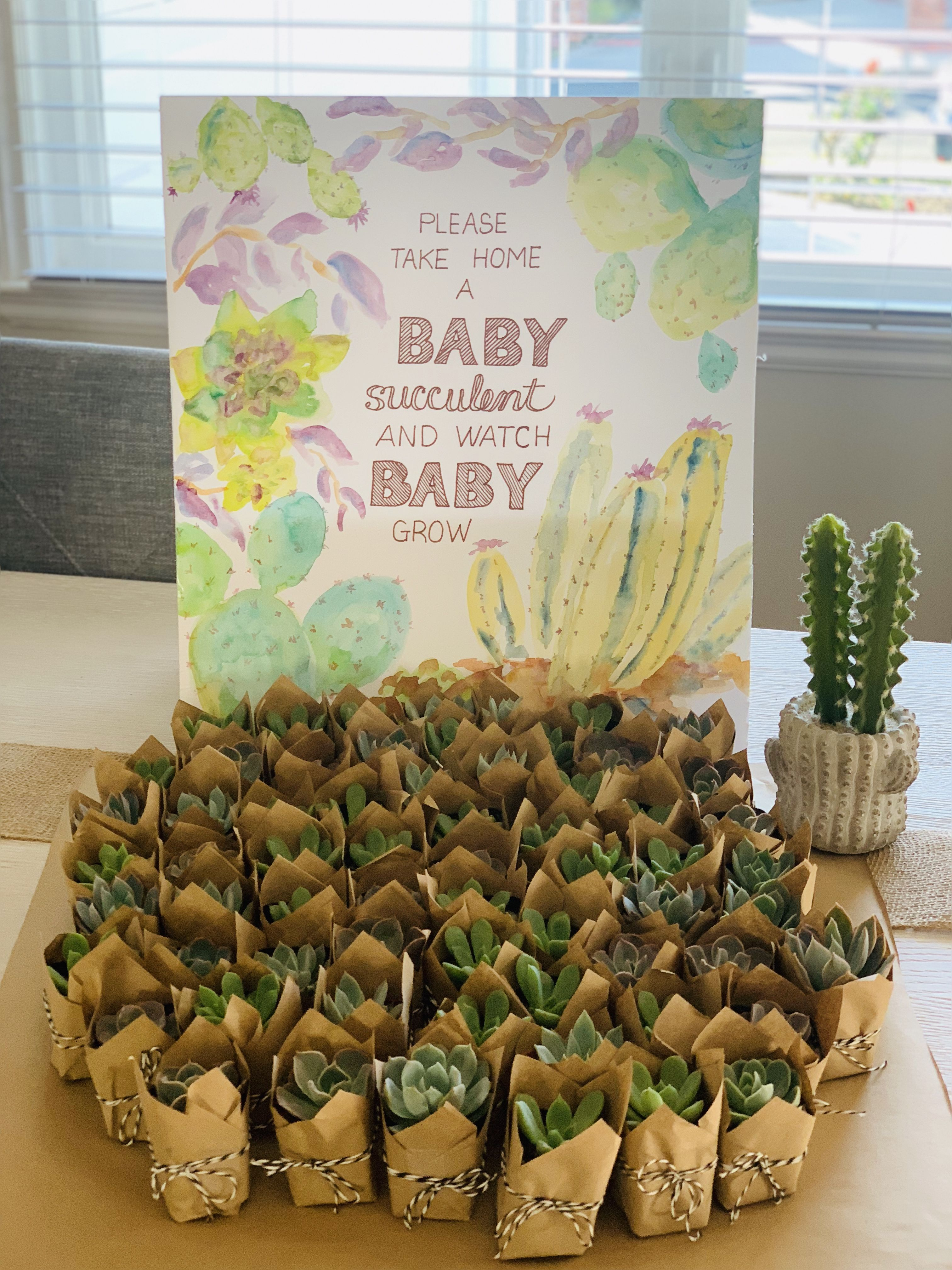 Adorable baby shower guest gifts with hand painted sign. #succulents ,  #adorable #Baby #gifts #guest #Hand #painted #shower #sign #succulents