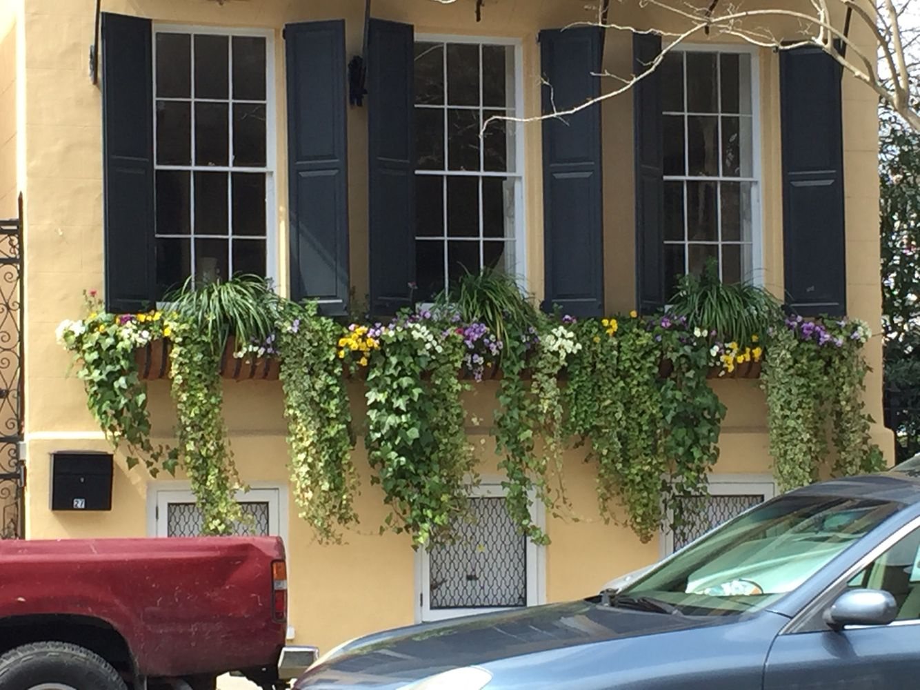 Window boxes in charleston SC.