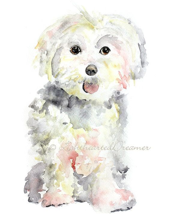 Maltese Painting Dog Print Maltese Puppy Print Kids Wall Art