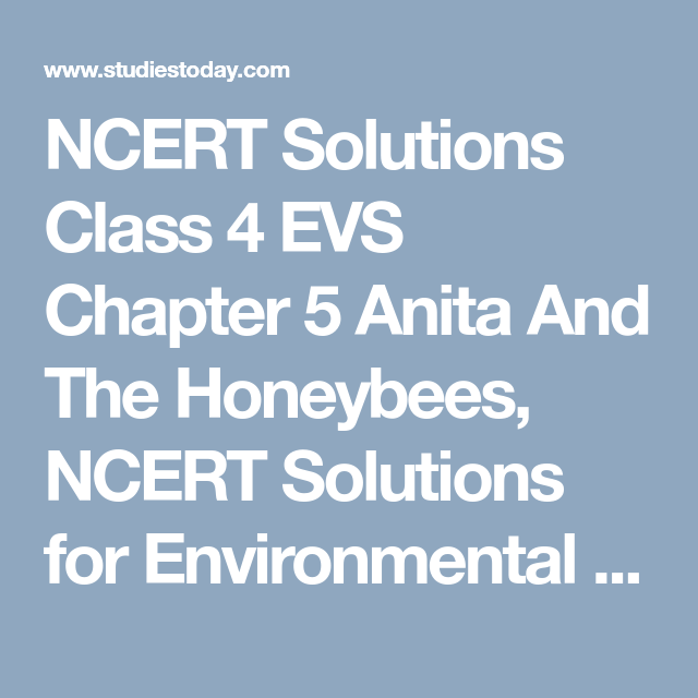 NCERT Solutions Class 4 EVS Chapter 5 Anita And The