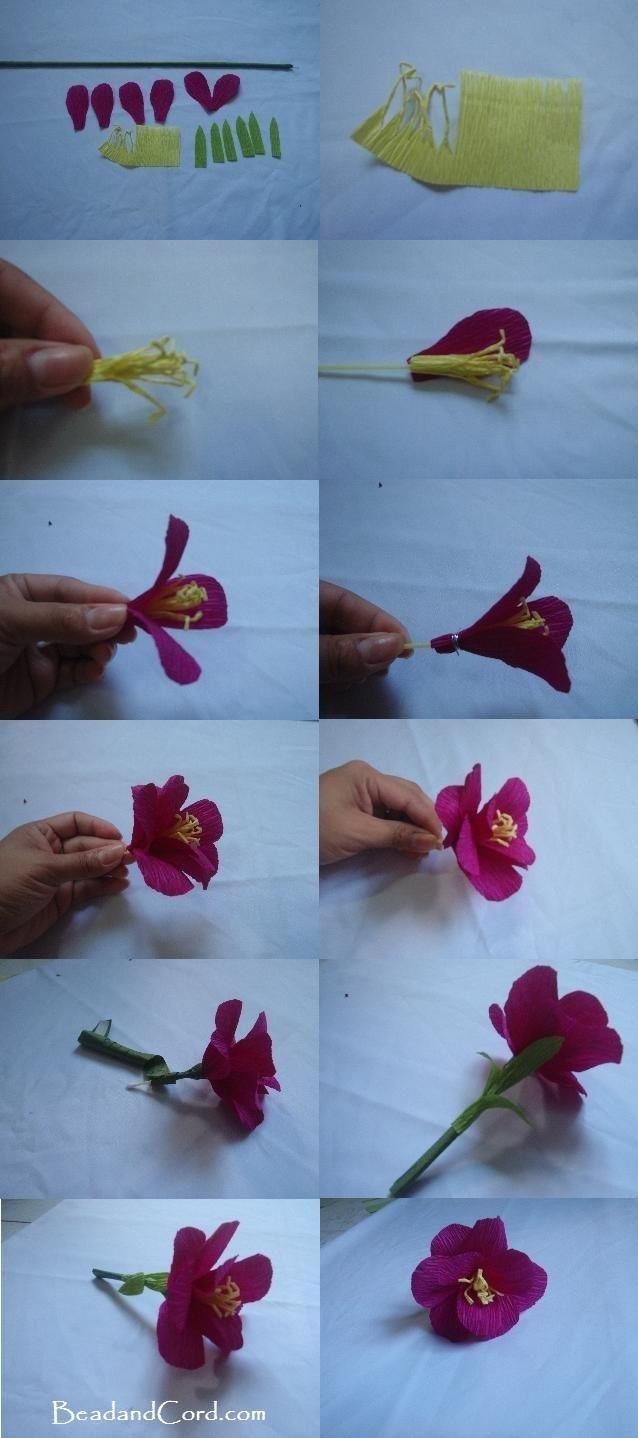 DIY Paper Flower  Diy paper Flower and Paper flowers