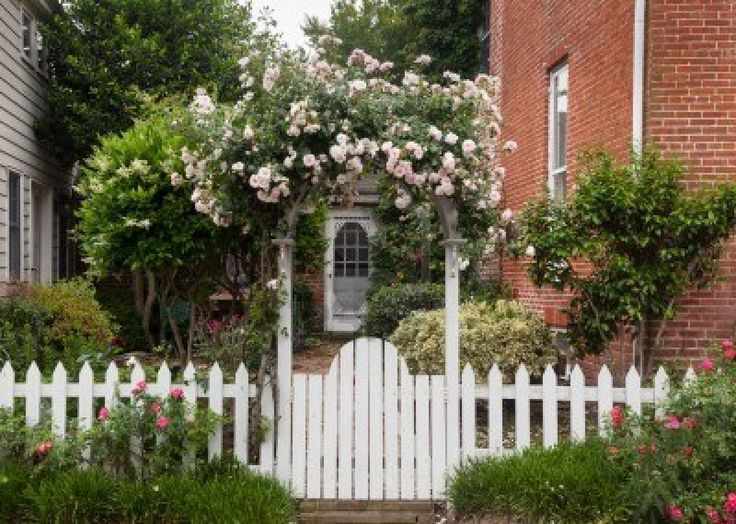 pinterest white picket fence with flowers | Yellow and red flowers growing along a white picket ... | Garden ideas