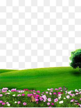 Las Flores Psd 65000 Recursos Graficos De Photoshop Para Descarga Gratuita Photoshop Backgrounds Free Flower Png Images Tree Photoshop