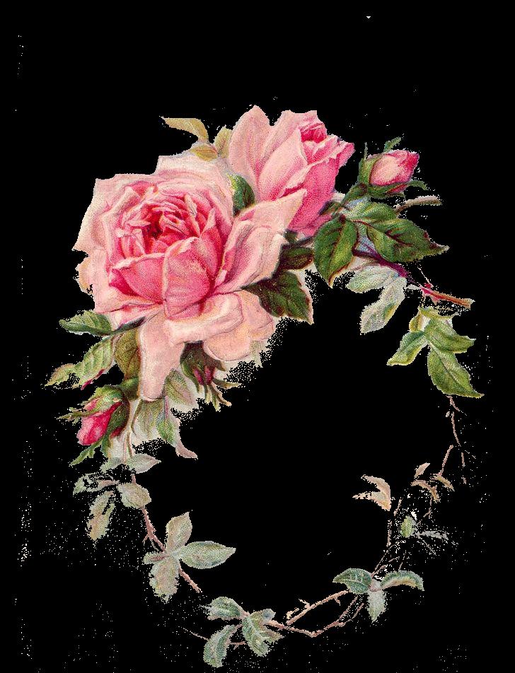 Free Digital Vintage Rose Frame Png Flower Treasure Vintage Rosenrahmen Freebies Flower Frame Png Rose Frame Flower Frame