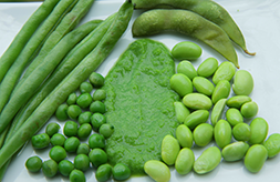 Baby food from fresh beans and peas green beans edamame sweet baby food from fresh beans and peas green beans edamame sweet peas forumfinder Gallery