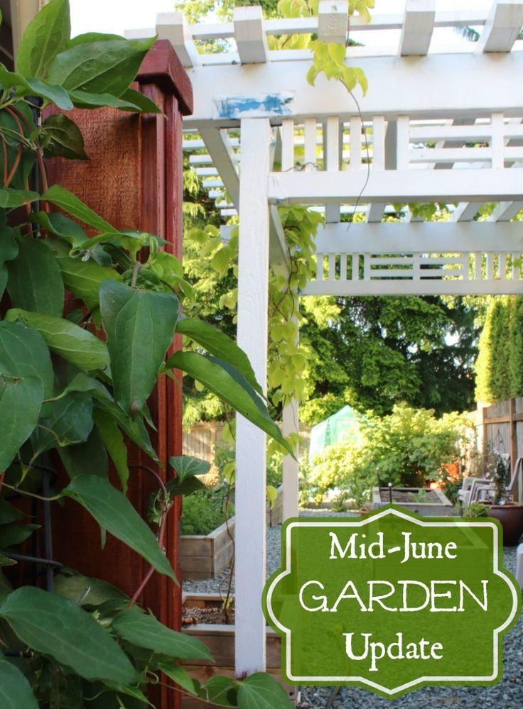MidJune in the Garden Greens, Fragrant Flowers, Berries