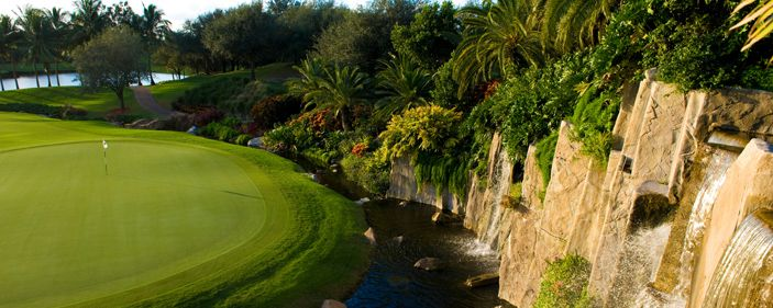 10+ Banyan golf florida info