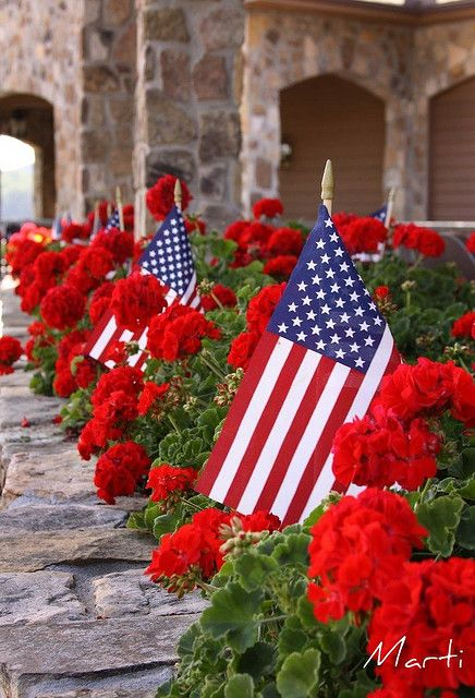 Place flags among red geraniums