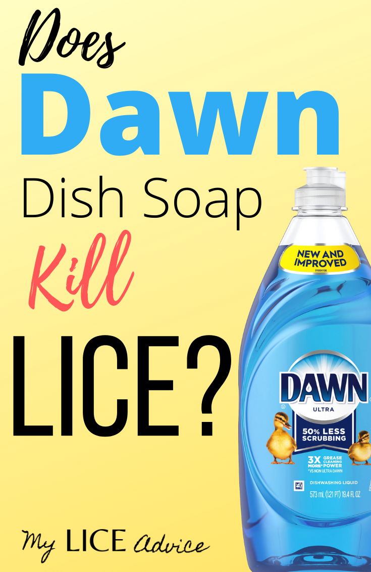 Dawn Dish Soap To Kill Lice Tutorial #headlicetreatment
