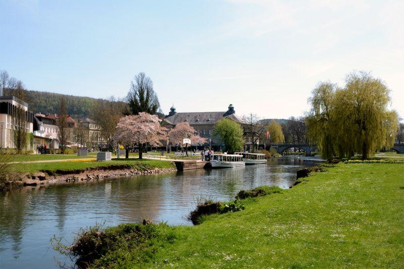 Frühling im Rosengarten in Bad Kissingen