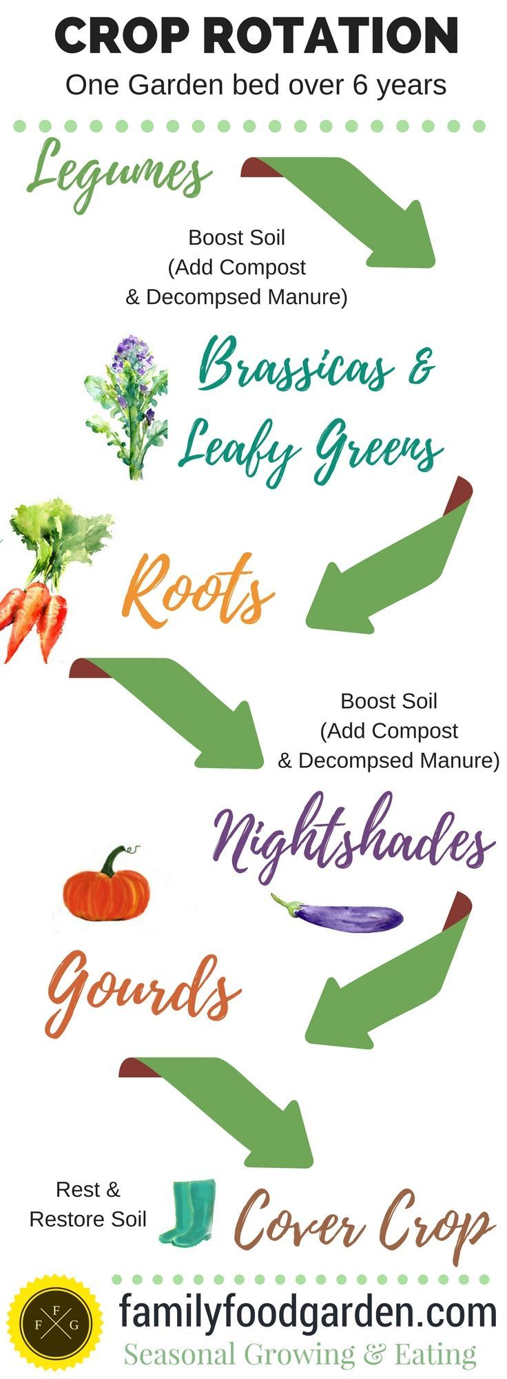 Crop Rotation Examples and Plant Families Crop rotation