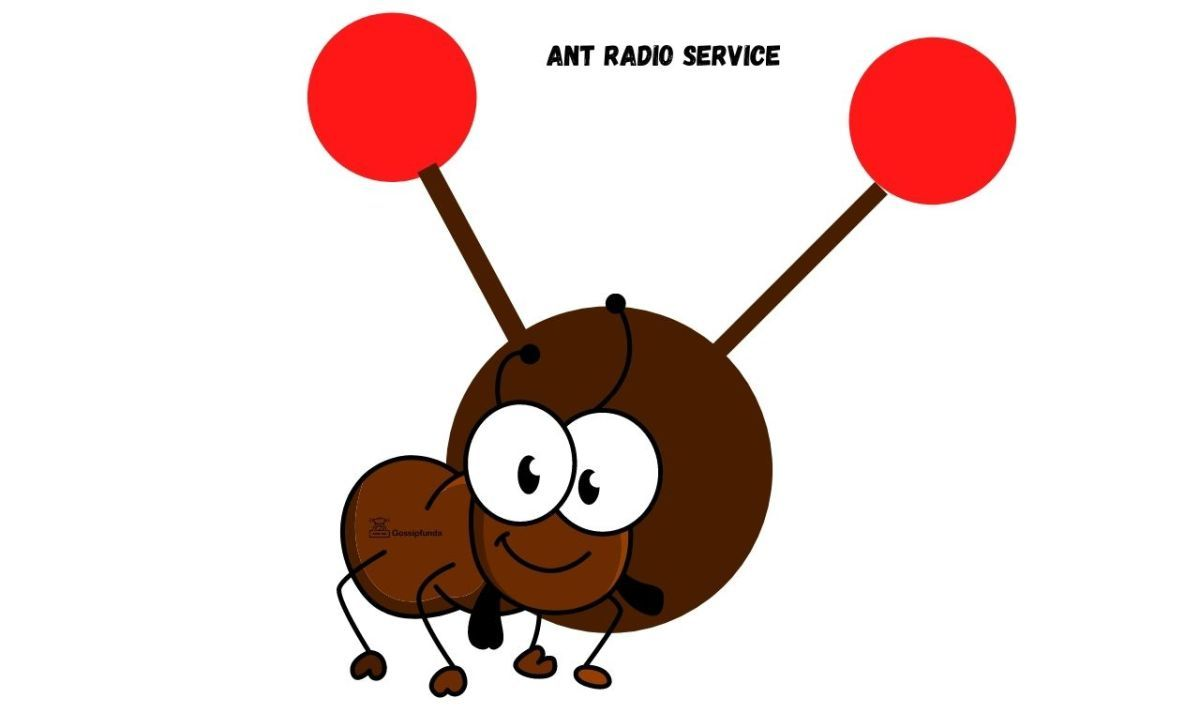 What is ant radio service? | Radio, Activity monitor, Workout apps
