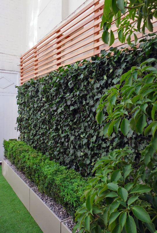 Muro verde bajo mmto proy robles pinterest bajos for Paredes de madera para jardin