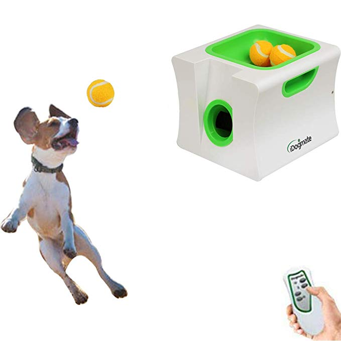 Pet Supplies Idogmate Automatic Ball Launcher Dog Toy Ball Thrower For Small Dog Small Machine With 3 Balls Amazon Com Dog Toys