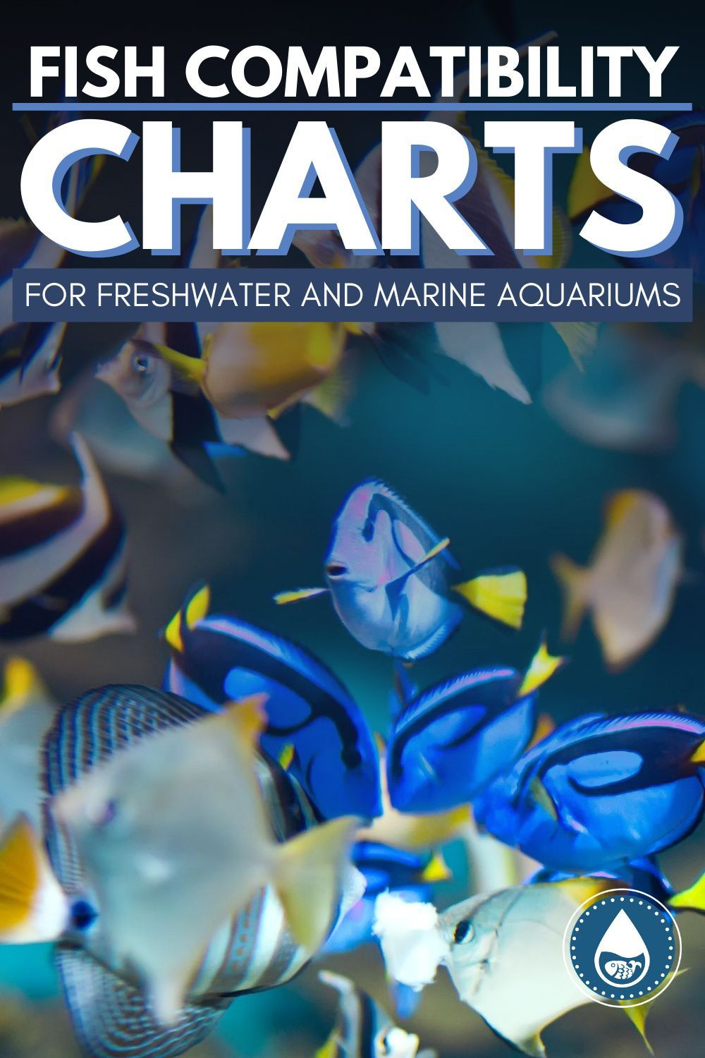 Fish Compatibility Charts for Freshwater and Marine ...