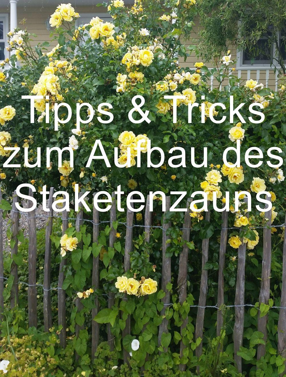 staketenzaun diy: aufbau des staketenzaun, materialauswahl, holzart