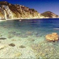 Vacanze sull'Isola d'Elba come risparmiare in campeggio