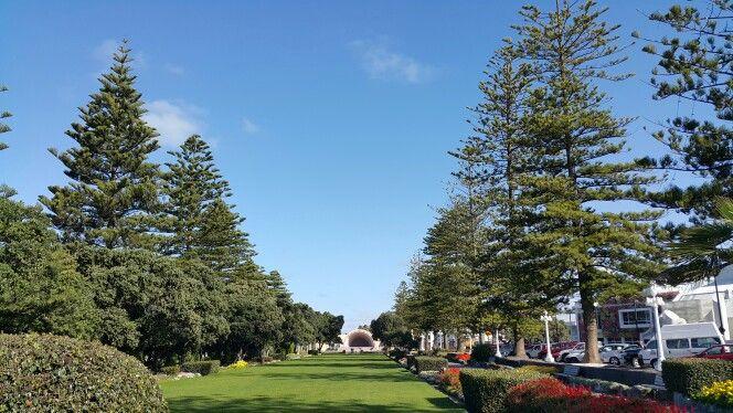 Gardens at Napier promenade