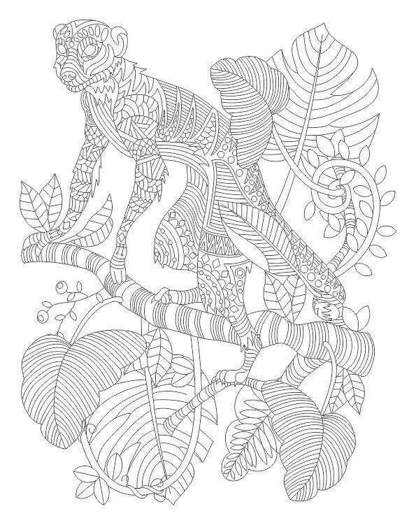 Inkleur5 | Zoo Animals | Pinterest | Dibujos, Pintar y Dibujos para ...
