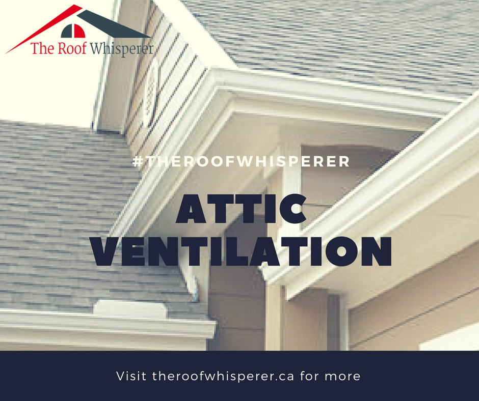 There Are Also Some Things To Remember Before You Ask For Attic Insulation In Toronto Keeping A Warmer Home During The Cool Roof Roofing Companies