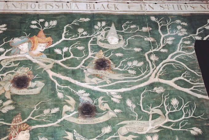 Warner Bros Harry Potter Studio Tour Family Tree Painting Family Tree Art Tree Painting