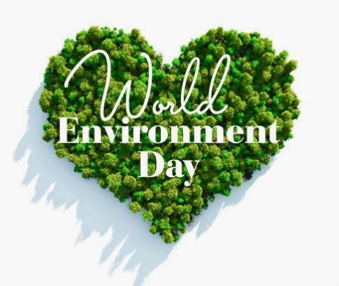 Environment Day Essay For Kid World Happy On