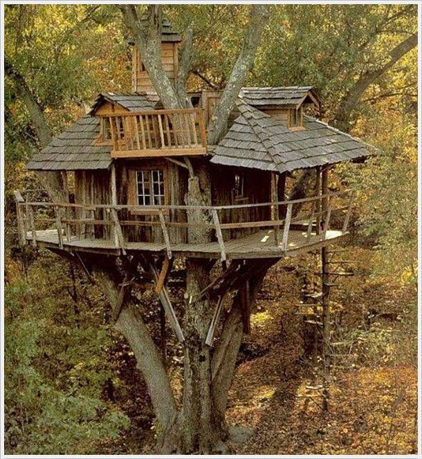 A Reader Bee House | TreeHouses | Pinterest | Bee house, Tree houses on cat house designs, signs designs, box house designs, luxury pool house designs, beehive plans and designs, food designs, bird designs,
