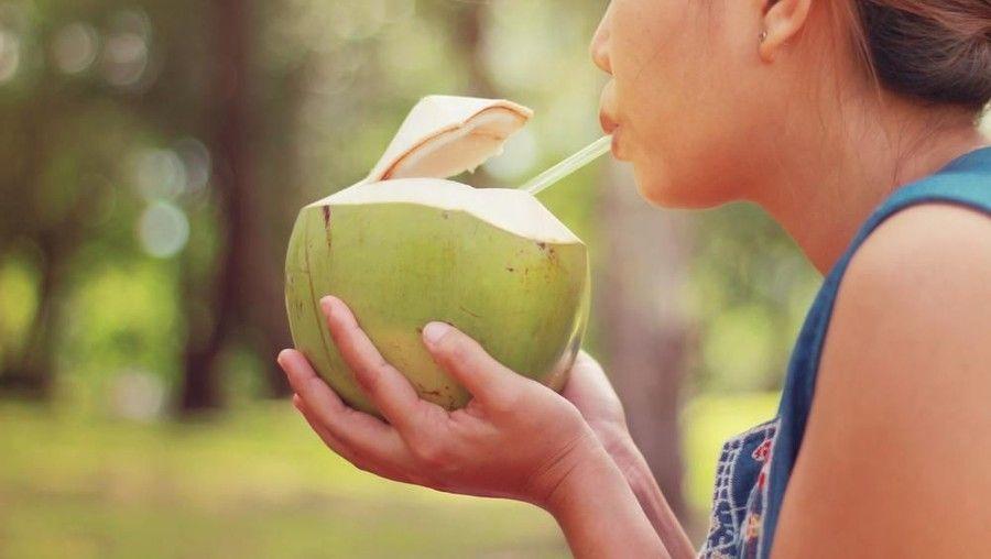 Mimpi kelapa muda togel