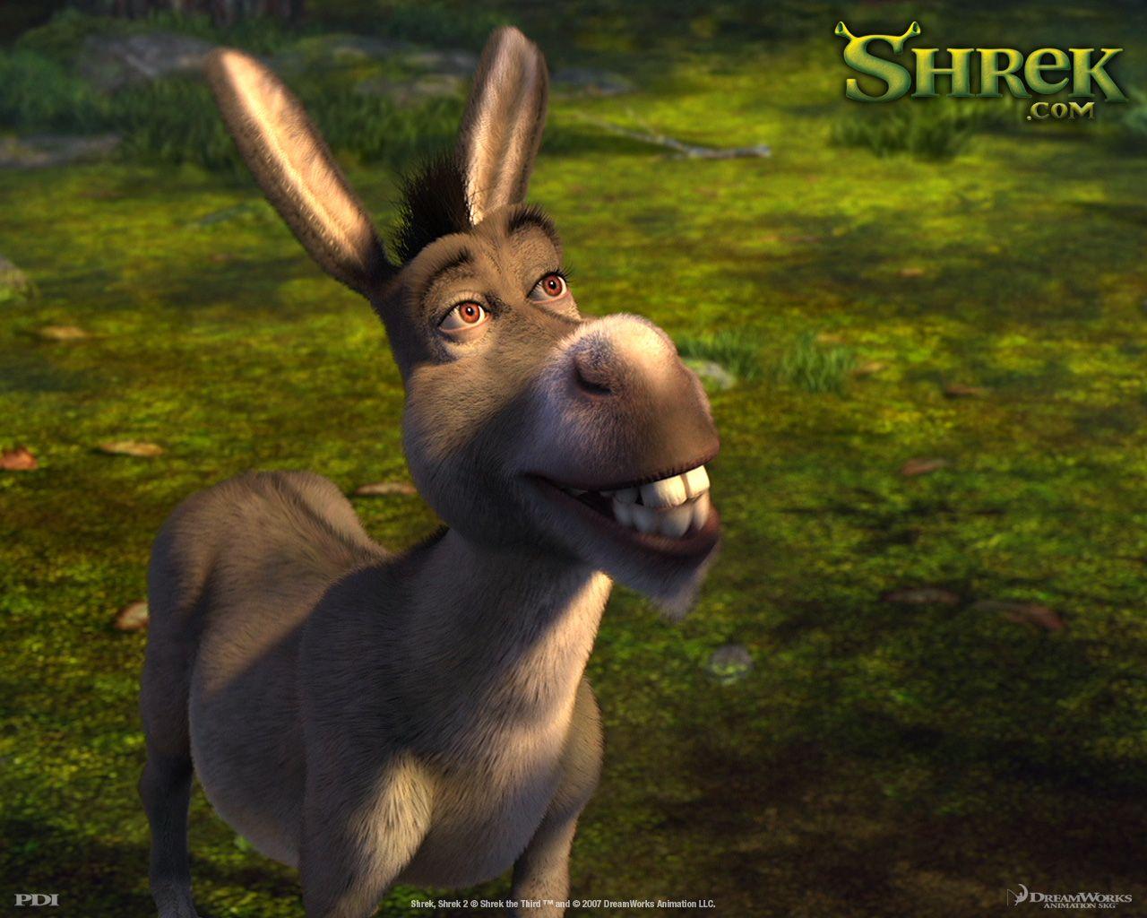 Donkey Wallpapers Movies I Like in 2019 Shrek memes
