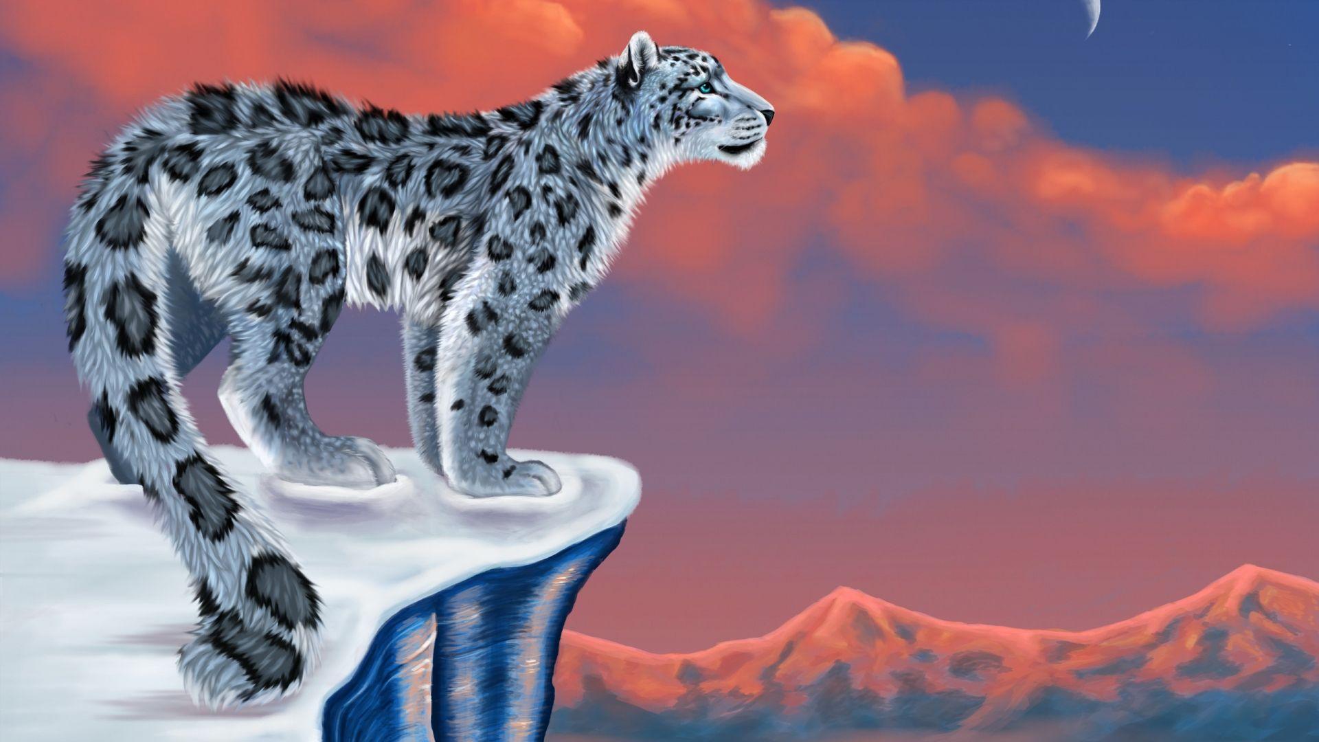 Wild 3d Lion Wallpaper Snow Leopard Drawing Animal Wallpaper