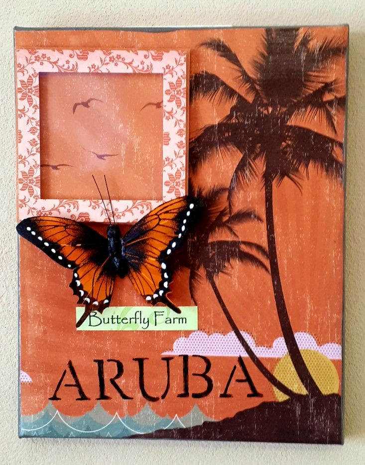 Aruba photo frame on canvas...butterfly farm. | Photo Frame Projects ...