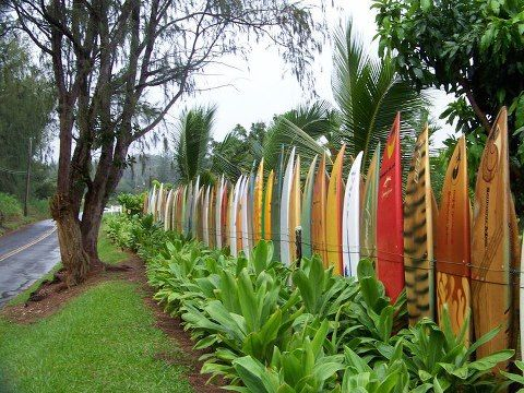 surfboards in Maui