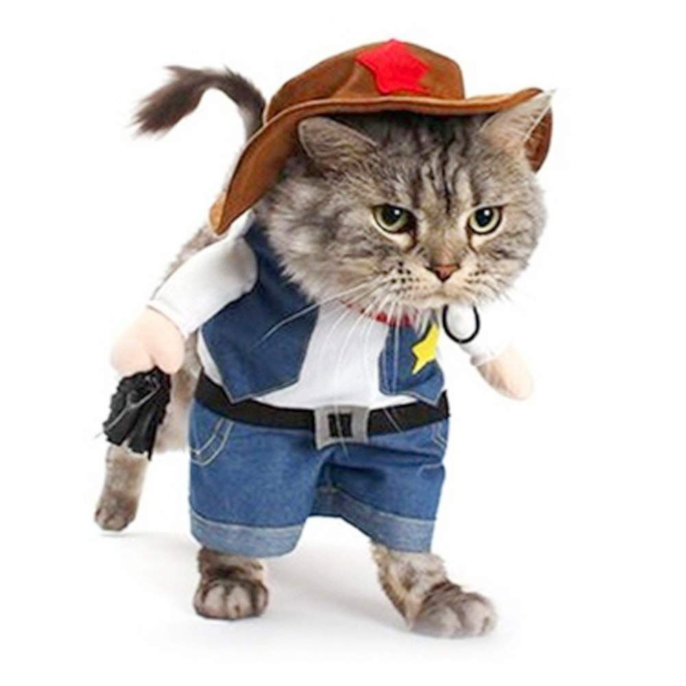 Meihejia Funny Cowboy Jacket Suit Super Cute Costumes For Small Dogs Cats In 2020 Funny Pet Costumes Pet Costumes Cat Clothes