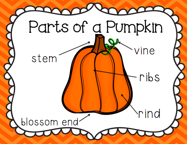 Parts of a    Pumpkin     Put up poster in the Science Area