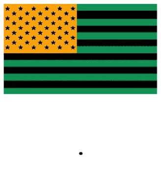 Stare At Center Of Flag For 30 Sec Then Focus On Black Dot In Empty Box Optical Illusions Flag Colors Illusions