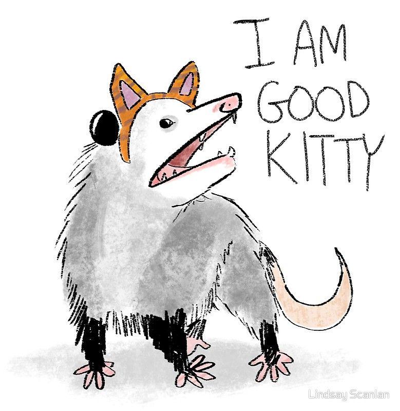I AM GOOD KITTY