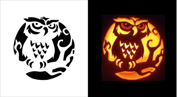 Lucrative image for owl pumpkin stencil printable