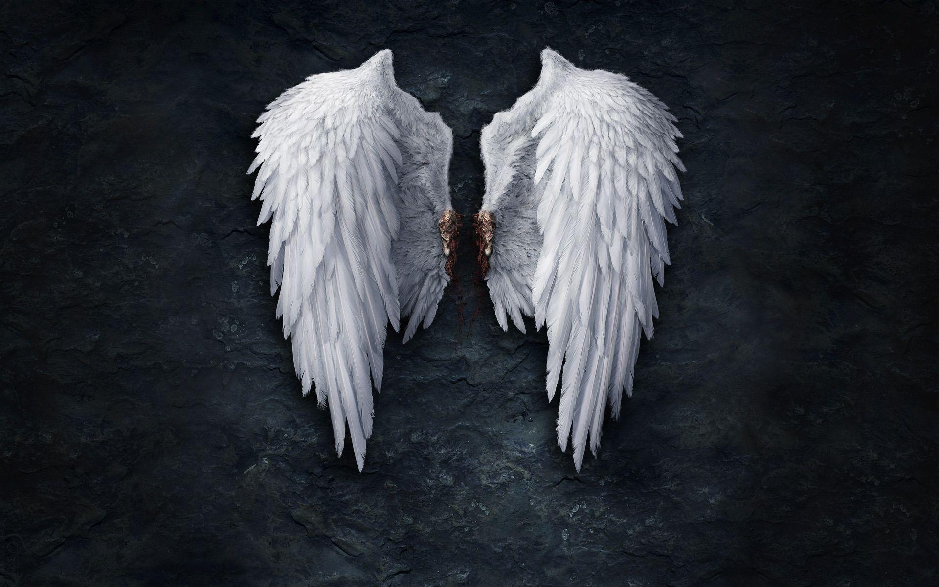 Grim Reaper With Angel Wings Broken Angel Wings Hd
