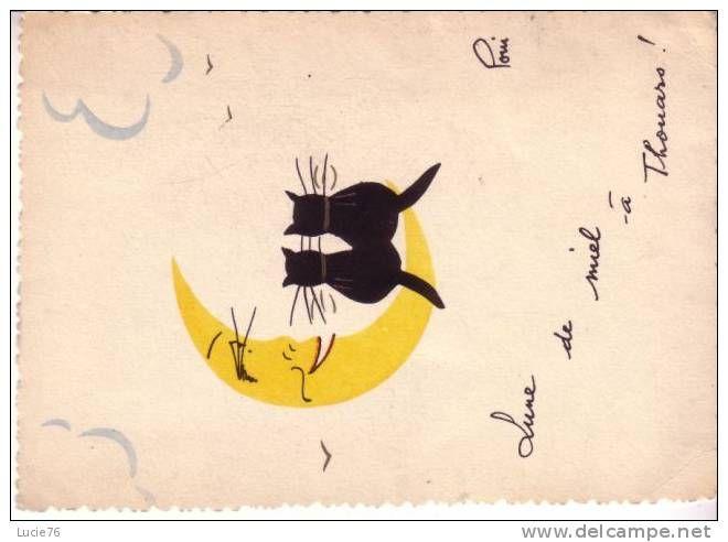 Thouars Lune De Miel A Thouars Dessin De 2 Chats Sur Un