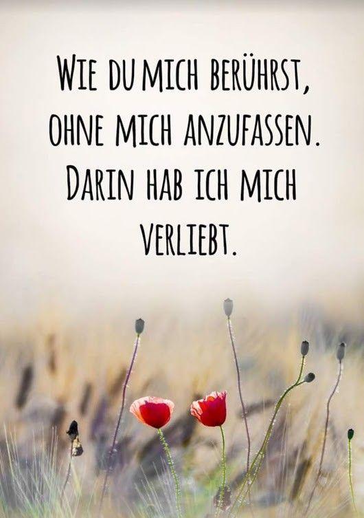 :) Danke Daizo💗. Geht mir genauso, Schatz. 👫🍀 - #Daizo #Danke #geht #genauso #mir #Schatz